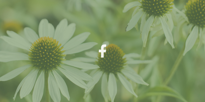 quicklink-facebook